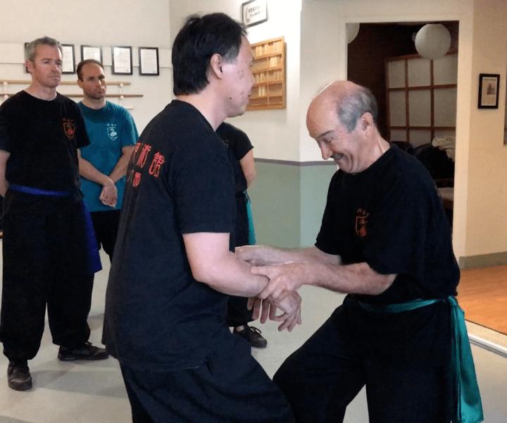 [Xingyi Quan] Tout est dans les jambes en Xingyi Quan, ou presque…