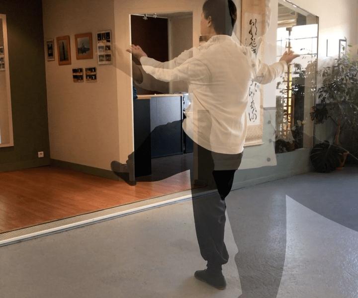 [Taiji Quan] Aide précision 7 – Jusqu'au coup de poing circulaire gauche