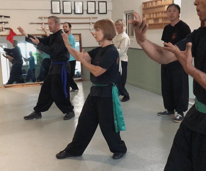 [Xingyi Quan] Comprenez l'action de «ne pas bouger»