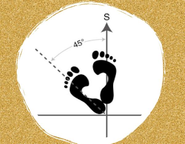 Ce que nous indiquent les 3 postures de base en arts martiaux course image