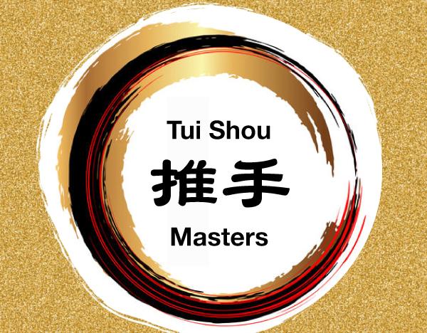 Tui Shou (Poussée des mains) Master 1 course image