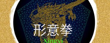 Xingyi Quan Traditionnel appliqué 2